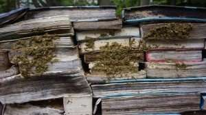 Decaying Books