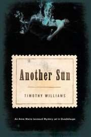Book Review – ANOTHER SUN by Timothy Williams