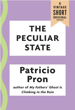 Book Review – THE PECULIAR STATE by Patricio Pron