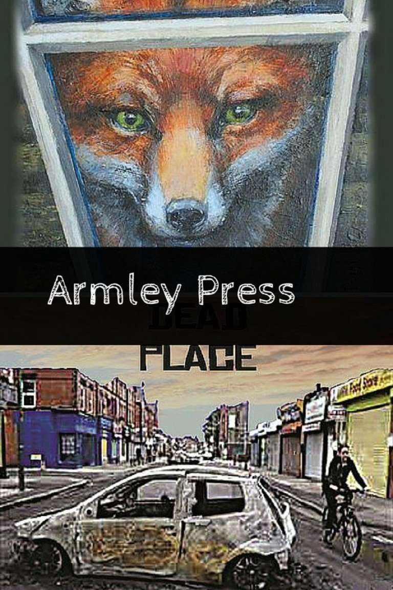 Guest Reviews – Amy and the Fox & The World is [Not] a Cold Dead Place