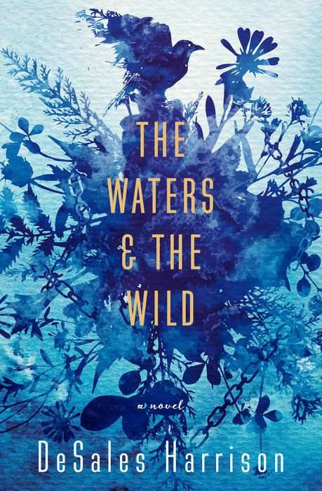The Waters & The Wild by DeSales Harrison, Review: Poetic introspection