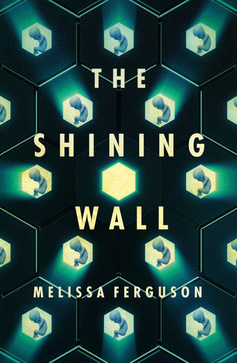 Melissa Ferguson on what inspired her to write The Shining Wall