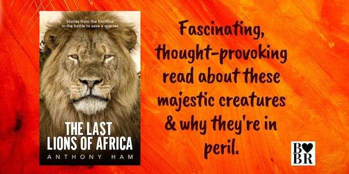 The Last Lions of Africa Review
