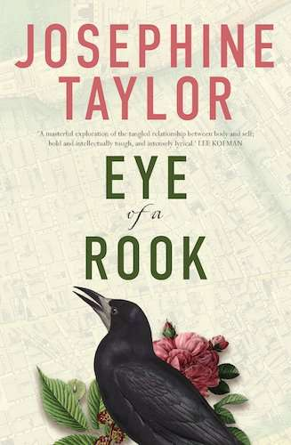 Eye of a Rook Book Cover